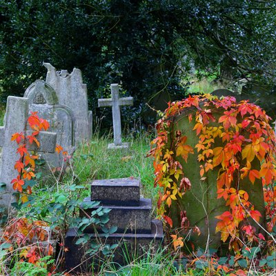 Is Brompton Cemetery A Time Machine?