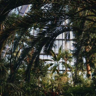 Facts About Botanical Gardens